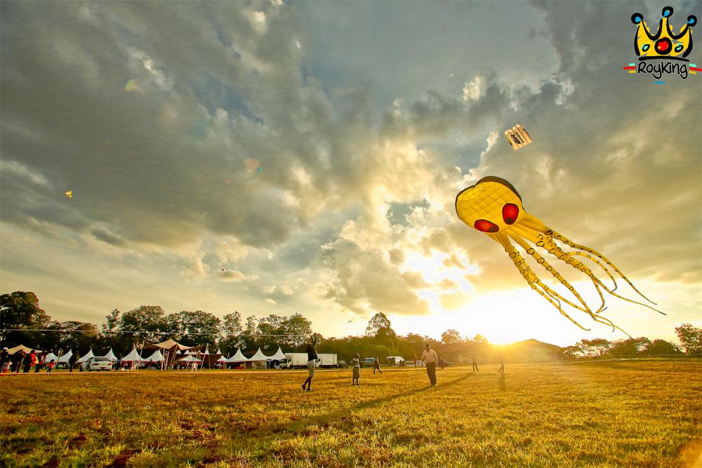 Kite Festival - 1