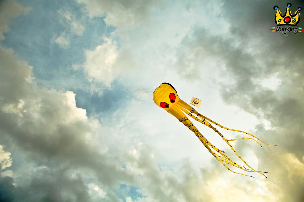 Kite Festival - 2